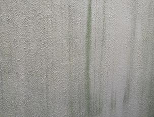 ●壁の汚れ
